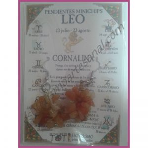LEO - PENDIENTES minerales minichips